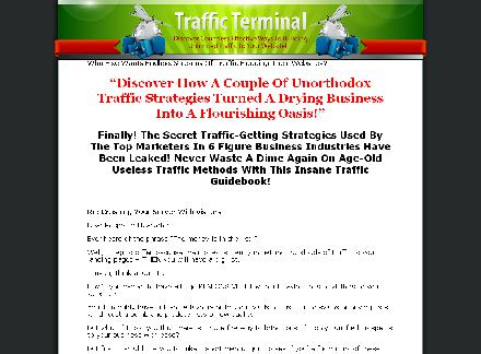 Traffic Terminal review