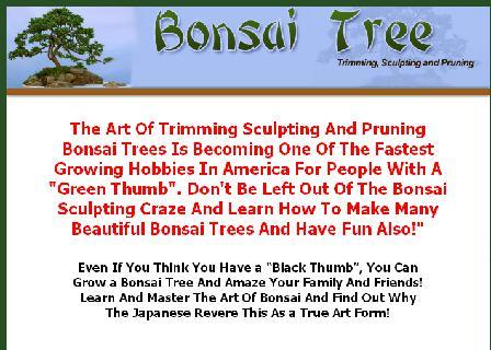 Bonsai Trees review