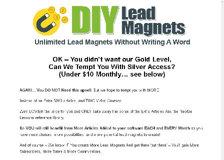 DIY Lead Magnets Silver review