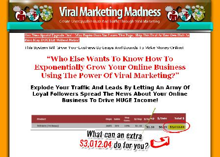 Viral Marketing Madness review