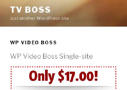 WP Video Boss Multisite review