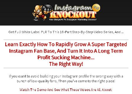 Instagram Knockout PLR Video Series review
