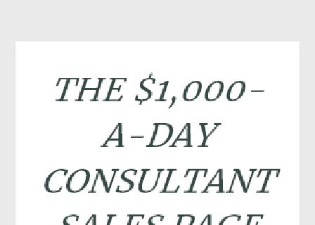 The $1000 a Day Consultant review