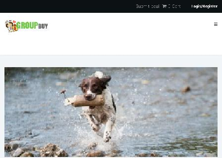 How to Choose A Dog review