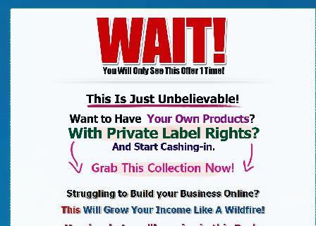 8 PLR Products plus Bonuses review